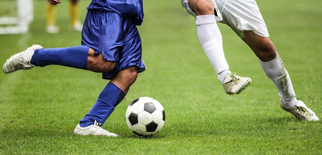 スポーツ団体向けサービ